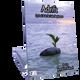 Adrift (Digital: Single User)