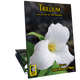 Trillium (Digital: Single User)